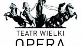 Teatr Wielki - Opera Narodowa - logo